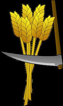 hitachi kraków